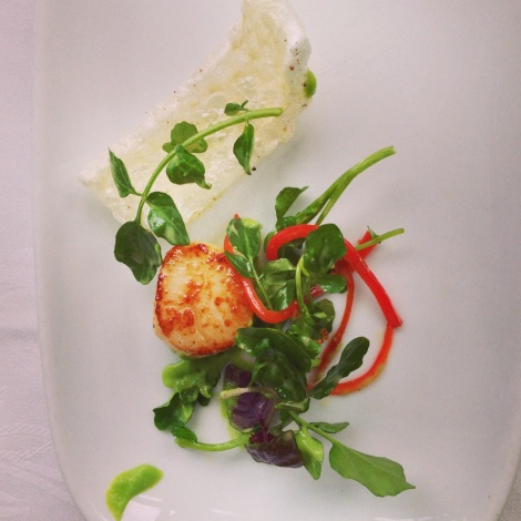 Seared Scallops at steersons sydney