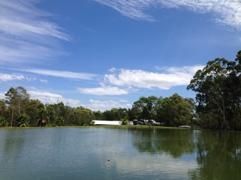 View at Leaves and Fishes Hunter Valley